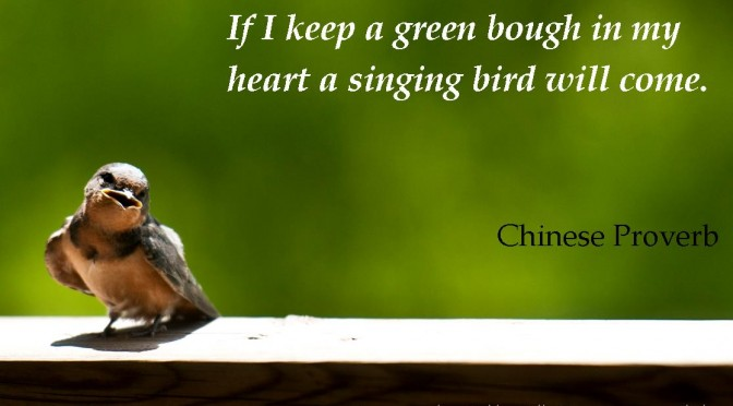 Chinese Proverb | Happiness | Singing Bird