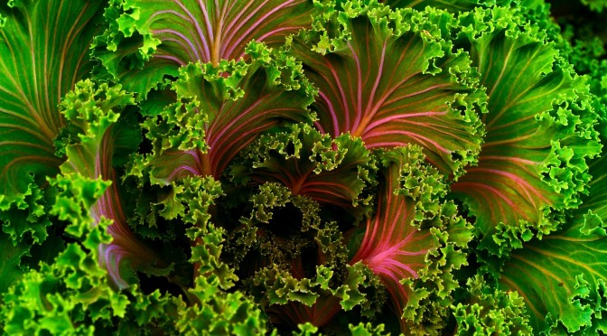 Leafy Greens | Kale | Eat yourself happy